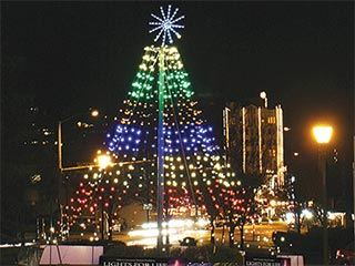 Lights for Life Tree